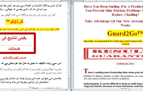Website Urdu Translation
