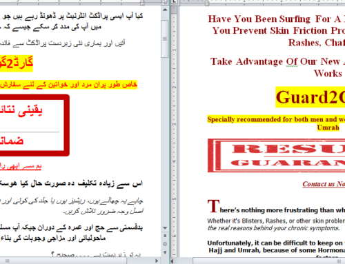 Website Urdu Translation